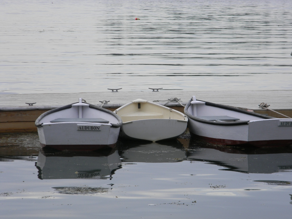 Audubon Boats